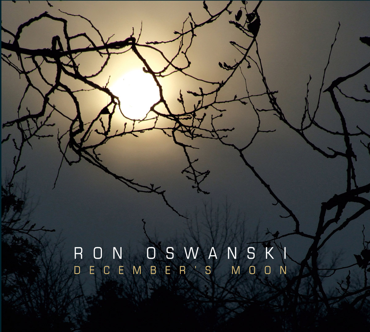 Ron Oswanski - December Moon CD